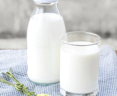 Cream & Milk